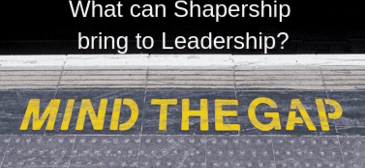 What can Shapership bring to Leadership